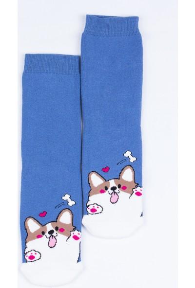 Butik Kafası Sevimli Köpek Desenli Çorap Unisex