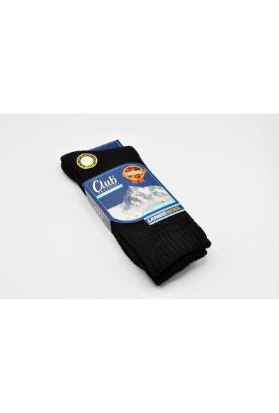 Çekmece 6'lı Erkek Lambswool Yün Kışlık Termal Çorap Karışık Renk