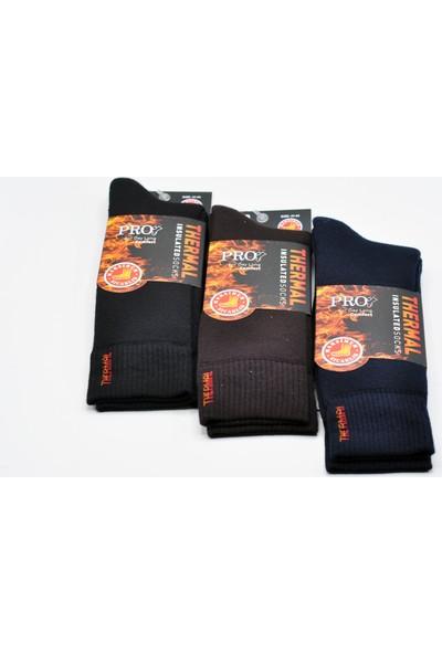 Pro Kaliteli Kışlık Havlu Erkek Termal Çorap 3 Adet Karışık Renk