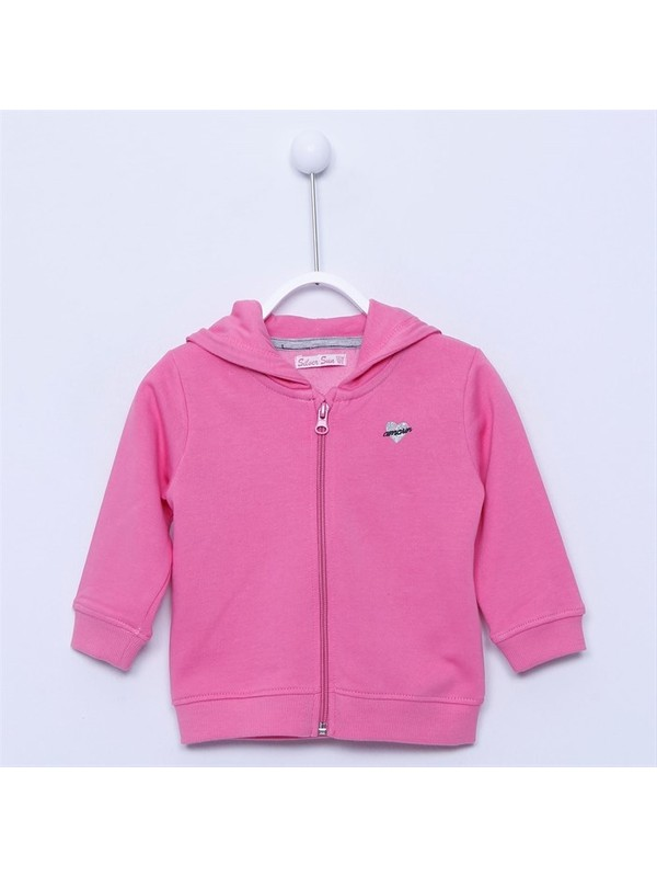 Silversun Bebek Kız - Kapüşonlu Sweatshirt - Jm-113161