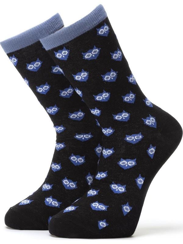 Ciorap 3'lü Erkek Baykuş Desenli Çorap 4413-A3