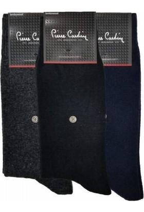 Pierre Cardin Lambswool Yün Kışlık Erkek Çorap 3'lü