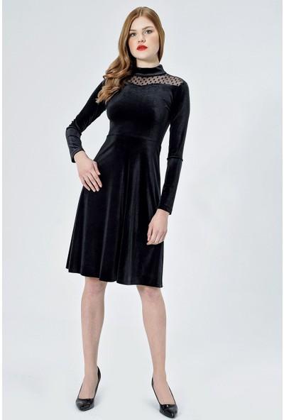 Jument Kadın 55006 Kadife Puanlı Tül Garnili Siyah Elbise