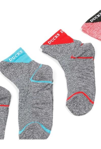 Mim Çorap Kadın Kısa Konç 4`lü Çorap