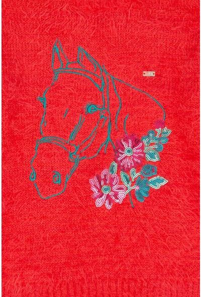 U.S. Polo Assn. Kız Çocuk Triko Kazak 50213225-Vr039