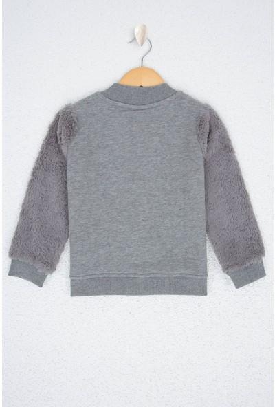 U.S. Polo Assn. Kız Çocuk Sweatshirt 50210580-Vr086