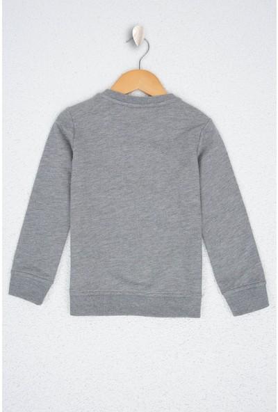 U.S. Polo Assn. Erkek Çocuk Sweatshirt 50207574-Vr086