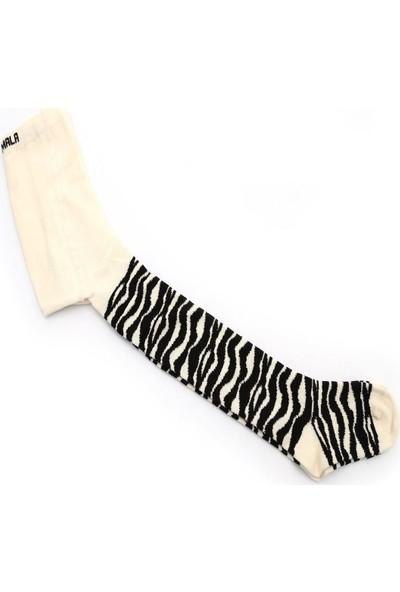 Ciorap Çocuk Siyah Zebra Desen Külotlu Çorap 3421