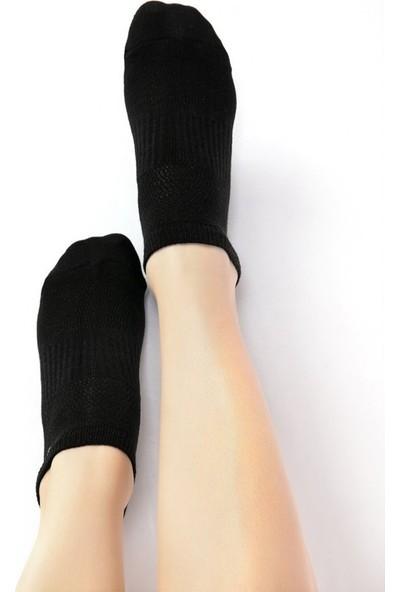 Ebru Şallı Siyah Renk 3'lü Set Sneaker Çorap