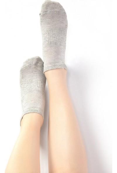 Ebru Şallı Gri Renk 3'lü Set Sneaker Çorap