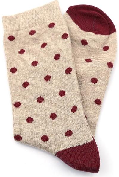 Ciorap Kadın Kahverengi Desenli 4'lü Çorap 99606076