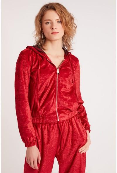 Home Store Kadın Sweatshirt 19630008119