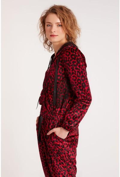 Home Store Kadın Sweatshirt 19630008120