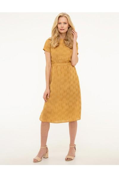 Pierre Cardin Kadın Dokuma Elbise 50204413-Vr072