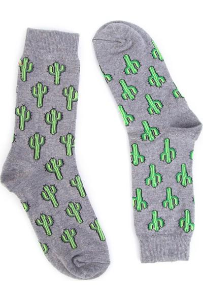 Nilumoda Gri Kaktüs Desenli Renkli Soket Çorap