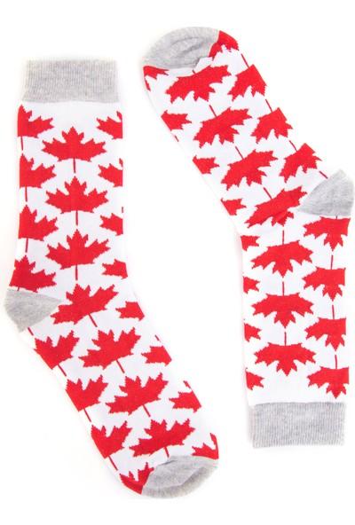 Nilumoda Kanada Bayrak Desenli Renkli Soket Çorap