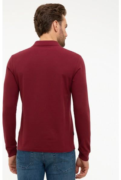 Pierre Cardin Polo Yaka Erkek Sweatshirt 50226541-VR014