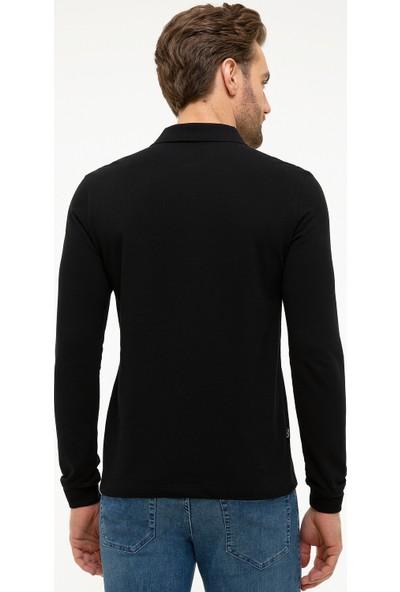Pierre Cardin Polo Yaka Erkek Sweatshirt 50226541-VR046