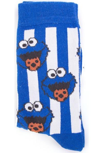Nilumoda Lacivert Kurabiye Canavarı Desenli Renkli Soket Çorap