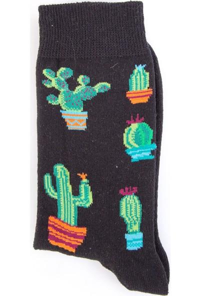 Nilumoda Siyah Kaktüs Desenli Renkli Soket Çorap