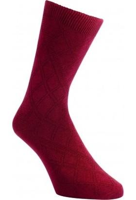 Viridi Vanda Erkek 2'li Soket Çorap
