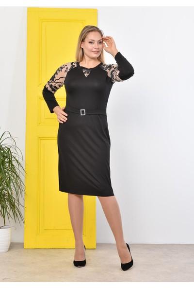 Tiri-Wir Kadın Siyah Kolları Tül Payet Işlemeli Ebise 4XL