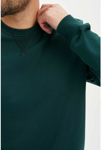 DeFacto Erkek Basic Regular Fit Sweatshirt