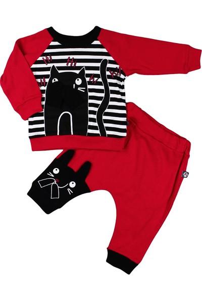 Babycool Unisex 2 Parça Kedili Bebek Takım