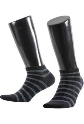 Aytuğ Platinium Erkek Pamuk Patik Çorap - 12211 Siyah 40 - 45
