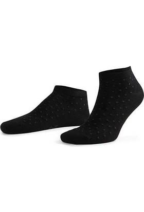 Aytuğ Platinium Erkek Pamuk Patik Çorap - 12218 Siyah 40 - 45