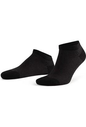 Aytuğ Erkek Bambu Patik Çorap Desenli - 14239 Siyah 40 - 45