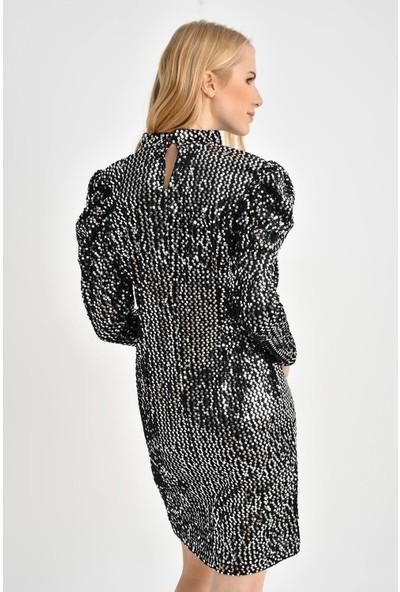 Tena Kadın Gümüş Kabarık Kollu Kadife Payetli Elbise 0YBELSA3526