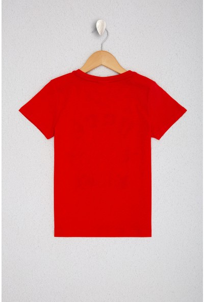U.S. Polo Assn. Erkek Çocuk T-Shirt 50220304-VR097