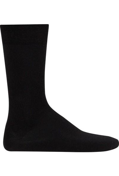 D's Damat Erkek Basic 3lü Çorap