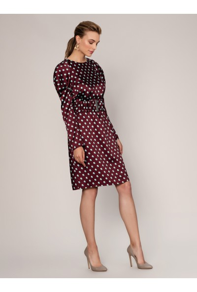 Roman Kadın Puantiyeli Elbise-K1911043-008