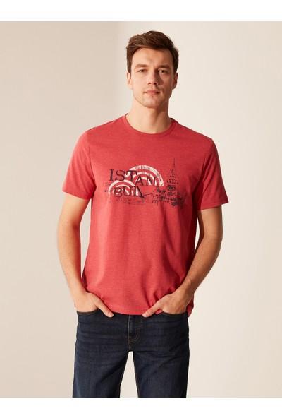 LC Waikiki Bisiklet Yaka Erkek T-Shirt