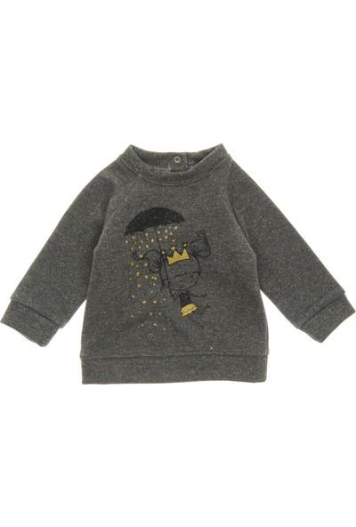 Panço Kız Bebek Sweatshirt 18231092100