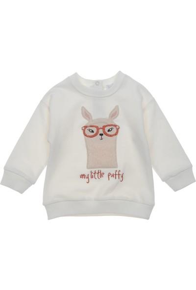 Panço Kız Bebek Sweatshirt 18231096100