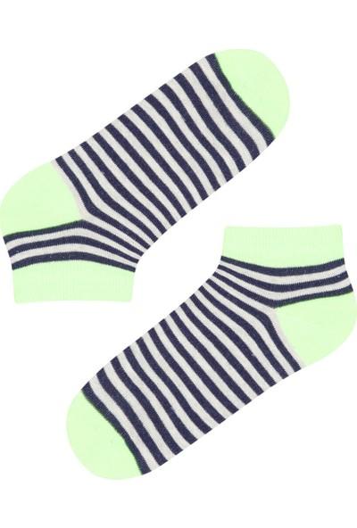 Penti Çok Renkli Erkek Çocuk Neon Striped 2'li Patik Çorap