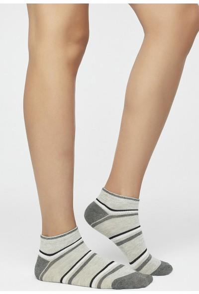 Penti Gri - Çok Renkli Dots 4'lü Patik Çorap