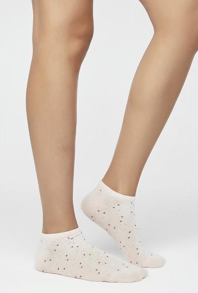 Penti Çok Renkli Dot Dokulu 3'lü Patik Çorap