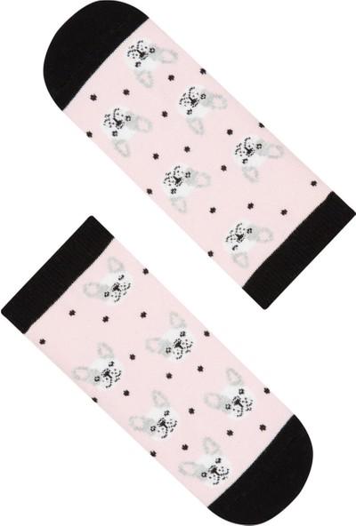 Penti Çok Renkli Kız Çocuk Dog 2'li Patik Çorabı