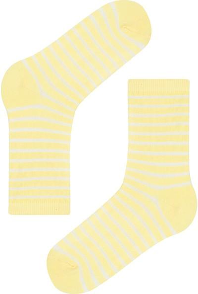 Penti Soft Kız Çocuk Stripes 3'lü Soket Çorap