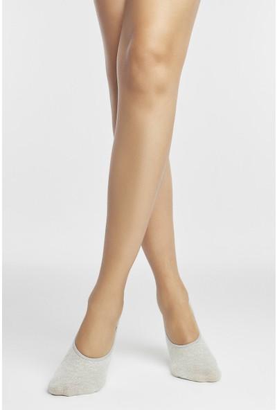 Penti Çok Renkli Paw 3'lü Babet Çorabı