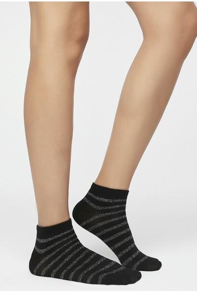 Penti Çok Renkli Lurex 2'li Patik Çorap
