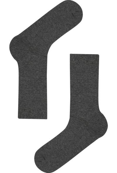 Penti Gri Erkek Basic 3'lü Soket Çorap