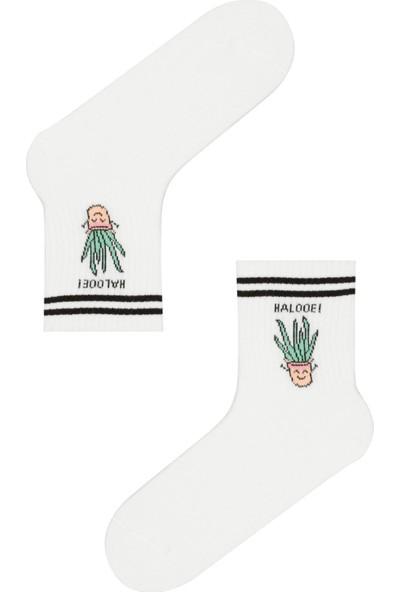 Penti Optik Beyaz Aloe Soket Çorap