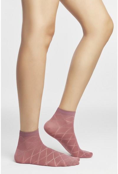 Penti Çok Renkli Crossline 3'lü Patik Çorap