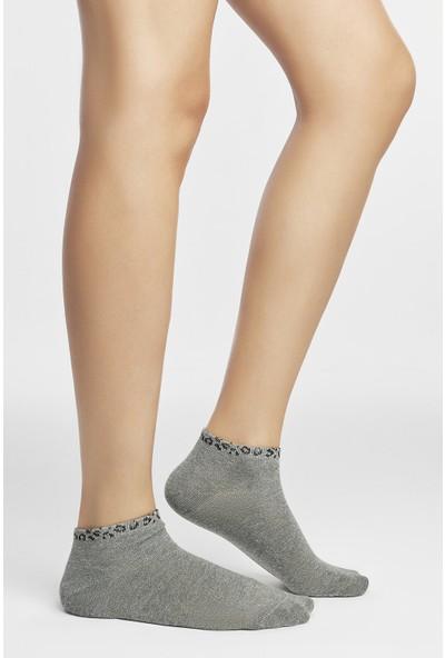 Penti Çok Renkli Animal 3'lü Patik Çorabı