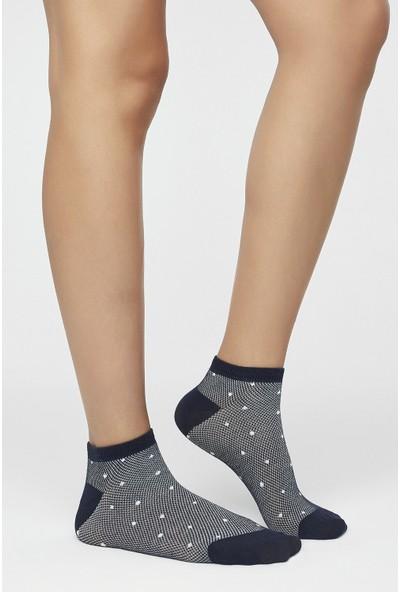 Penti Lacivert Fresh 3'lü Patik Çorabı